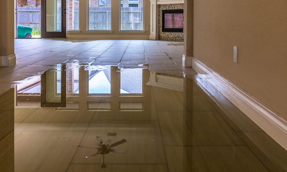 Ignoring a Water Leak – What's the Worst That Could Happen?