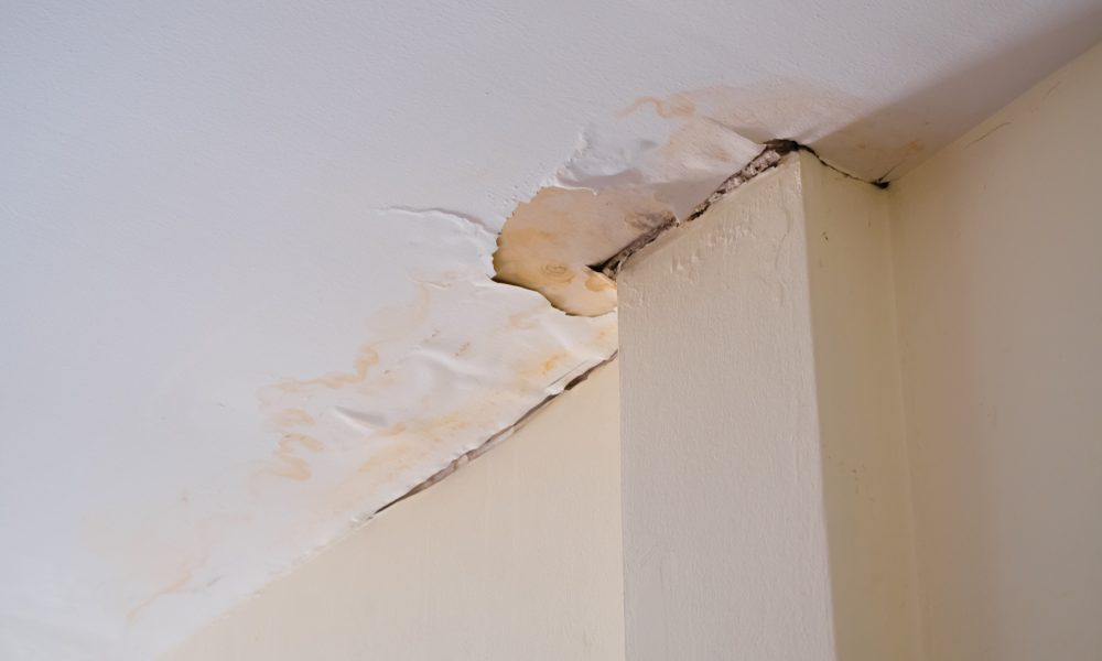 Wet Ceiling? You Might Have a Leaky Pipe