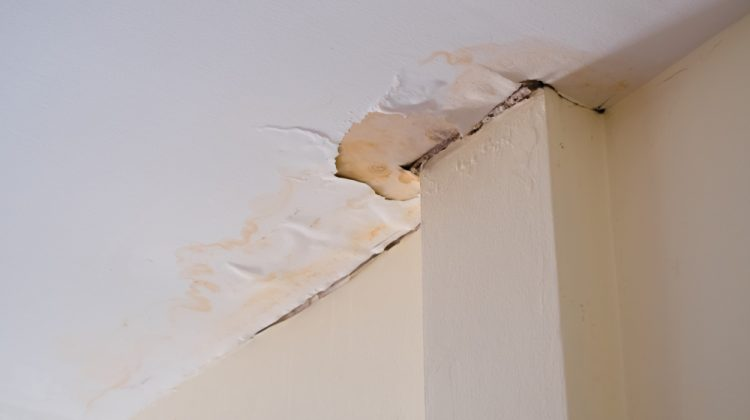 A leaky pipe is a common issue in many homes, especially in areas with hard water, like Southern California. And water leaks can cause major damage, even if small. In 2017, 11% of all homeowners insurance claims were for water damage. Small leaks will develop as pipes age. These tiny holes may be too small […]